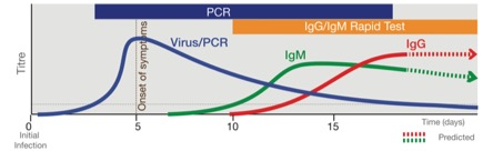 PCR test versus IGM rapid COVID test